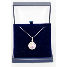 Necklace - Rivoli Swarovski Crystal Single Drop Round - Crystal Vitrail Light